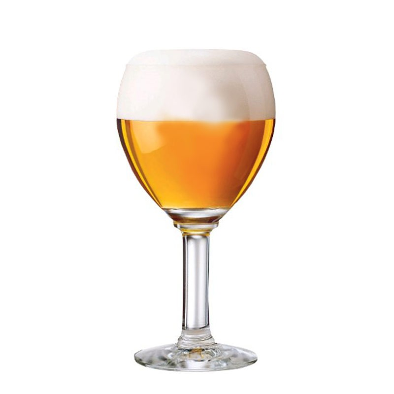 Skål i hjemmebrygget øl